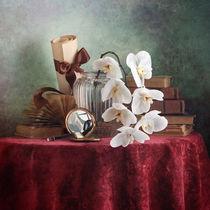 Weiße Orchidee von Nikolay Panov
