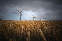 Windräder im Kornfeld von micha-trillhaase-fotografie