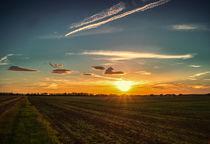 Sonnenuntergang von micha-trillhaase-fotografie