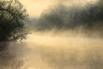 Mystischer Morgen by Bernhard Kaiser