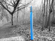 Der blaue Pfahl von Eva Dust