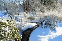 Wintergarten by gscheffbuch