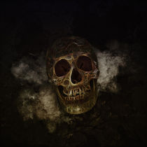 Mystical Golden Skull by lucia