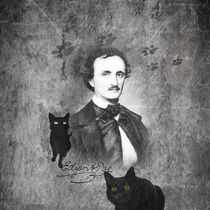 E.A. Poe - The Black Cat by lucia
