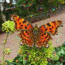 DeepDream – Schmetterling mit Traumgeschöpfen by schroeer-design