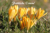 Fröhliche Ostern! von Simone Marsig