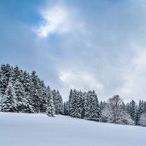 Winterlandschaft by jazzlight