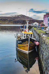 Fishing boat in Portree Harbour, in front of coloured houses by Bruce Parker