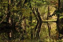 romantische Flußlandschaft by alana