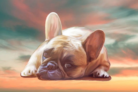 French-bulldog-painting