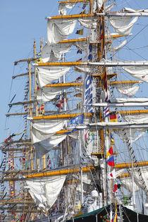 Segelschiffmasten, Sail 2015, Bremerhaven von Torsten Krüger