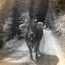 Nostalgie Kuh von kattobello