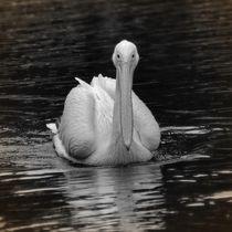 Nostalgie Pelikan von kattobello