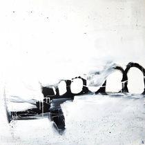 Landschaft schwarz weiß Flugzeug von Conny Wachsmann