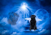 Black Pug Dog Angel standing on heaven's door by Sapan Patel
