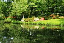 Park Paradies am See von Heinz E. Hornecker