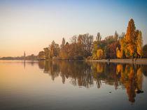 'Herbst auf der Mettnau' von Christine Horn