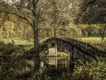 'Die Alte Brücke' von Christine Horn