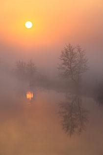Nebel, Sonne und der Fluss von Bernhard Kaiser