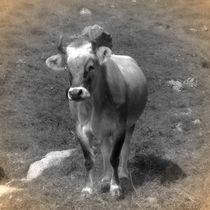 Nostalgie Kuh 2 von kattobello