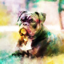 Bulldog Painting Colorful Art von Sapan Patel