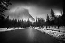 Yosemite Black and White von louloua-asgaraly