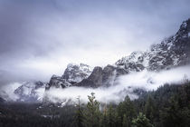 Yosemite National Park by louloua-asgaraly