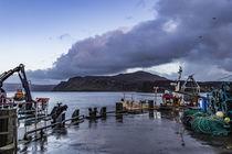 Ben Tianavaig across Loch Portree, on the Isle of Skye, Scotland von Bruce Parker