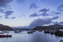 View of Rassay Sound from the quay at Portree Harbour, Isle of Skye, Scotland von Bruce Parker