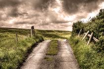 Country Tracks von Nigel Finn