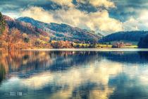 Reflections On A Lake von Nigel Finn