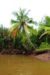 Zufluss zum Mekong von ann-foto