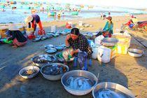 Fischhafen Mui Ne von ann-foto