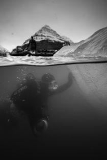 Galerie Eisberge - Taucher berührt Eisberg von Alexander Kassler