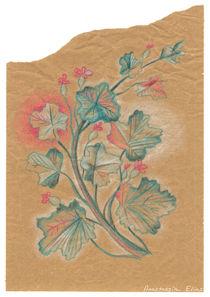 Plante 2 - 211216 by Anastassia Elias