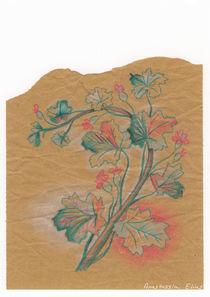 Plante 3 - 211216 von Anastassia Elias