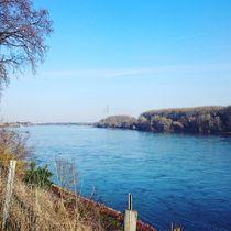 Der Rhein  von Ivy Müller