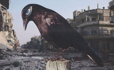 4-bird-of-death