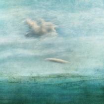 Deep silence by Priska  Wettstein