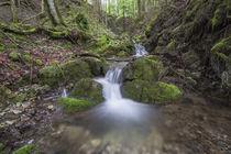 Steinbach Wasserfall by Rolf Meier