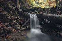 Stalllauer Bach Wasserfall von Rolf Meier