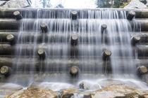 Holzstamm Wasserfall von Rolf Meier