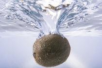 Kiwi by Rolf Meier