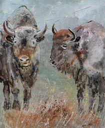 buffaloes by pol ledent