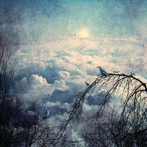 HEAVENLY BIRDS III von Pia Schneider
