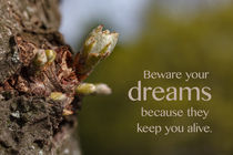 Beware Your Dreams by STEFARO .