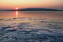 Eiszeit am Bodensee von Christine Horn
