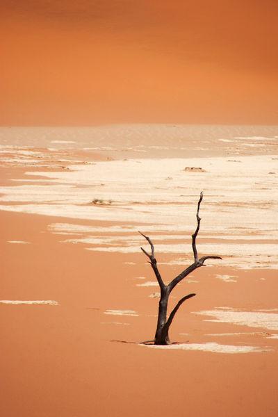 2016-namibia-404