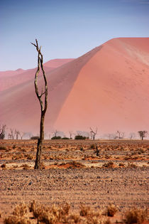 NAMIBIA ... pastel tones II by meleah