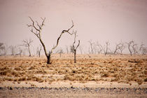 NAMIBIA ... pastel tones III by meleah